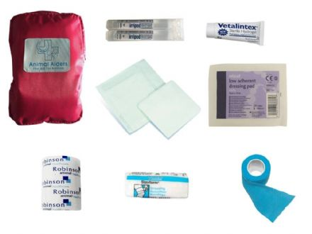Pink Basic First Aid Kit